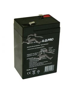 BATTERIE RECHARGEABLE 4A H 6V PLOMB
