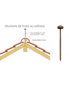 CLOU DE FAITAGE 3.8X120 RAL8004
